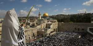 lulav-priestly-blessing-western-wall-kotel-jerusalem-cohen-sukkot