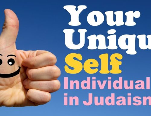 Your Unique Self: Individuality In Judaism – Rabbi Michael Skobac