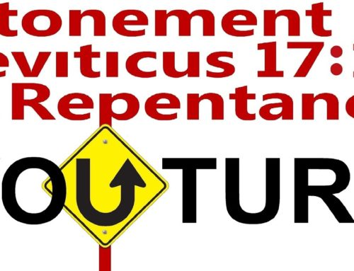 You Turn: Atonement, Forgiveness Of Sin, Leviticus 17:11, Repentance