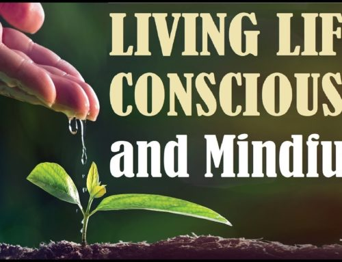 Living Life Consciously +mindfully Tools For Jewish Spiritual Growth